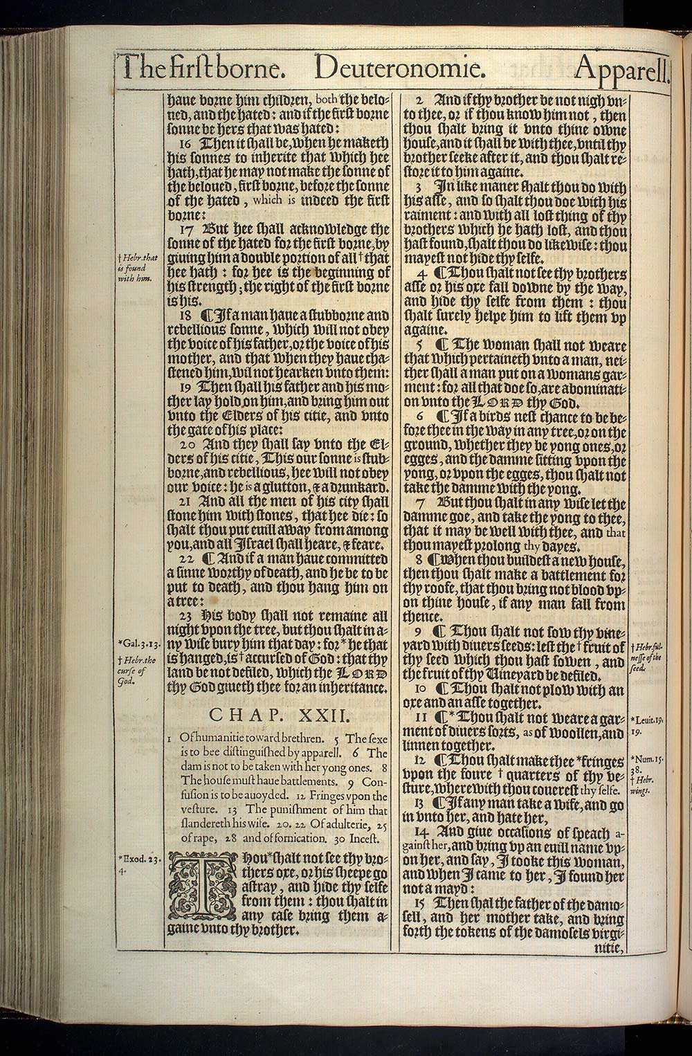Deuteronomy Chapter 22 Original 1611 Bible Scan