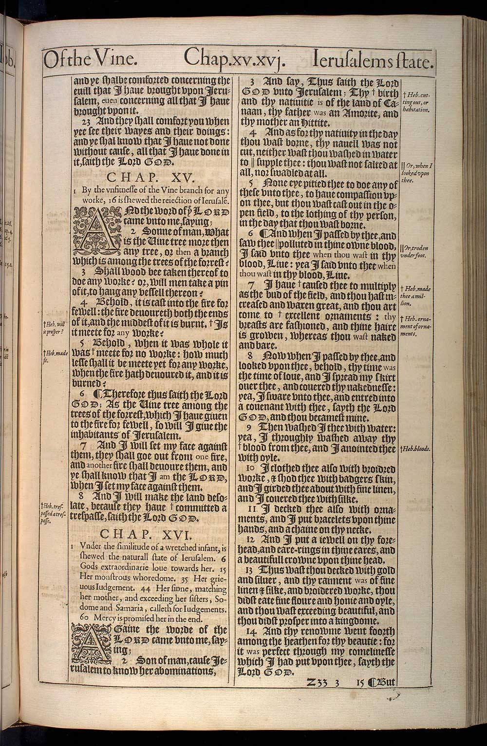 Ezekiel Chapter 14 Original 1611 Bible Scan
