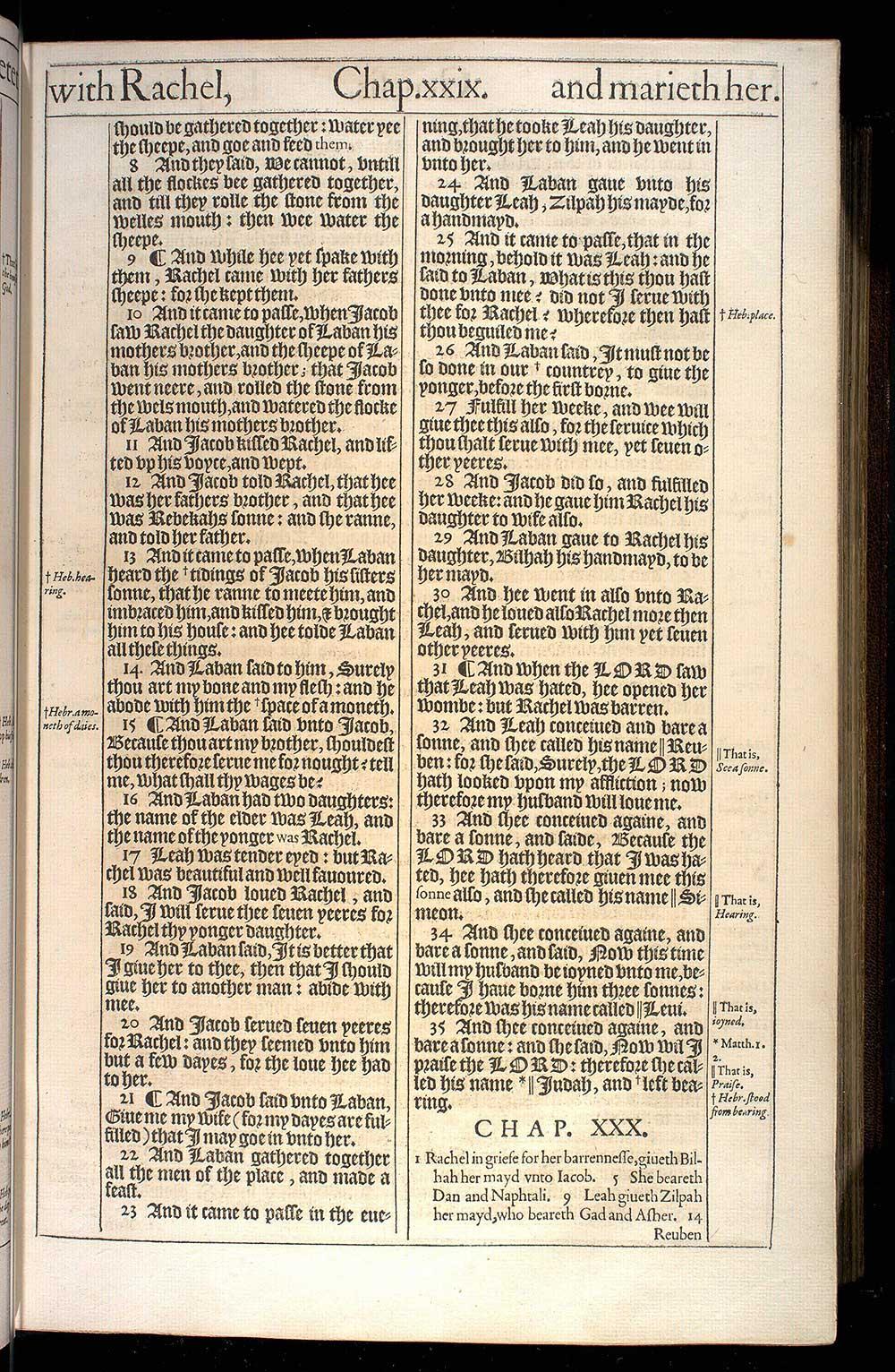 Genesis Chapter 29 Original 1611 Bible Scan
