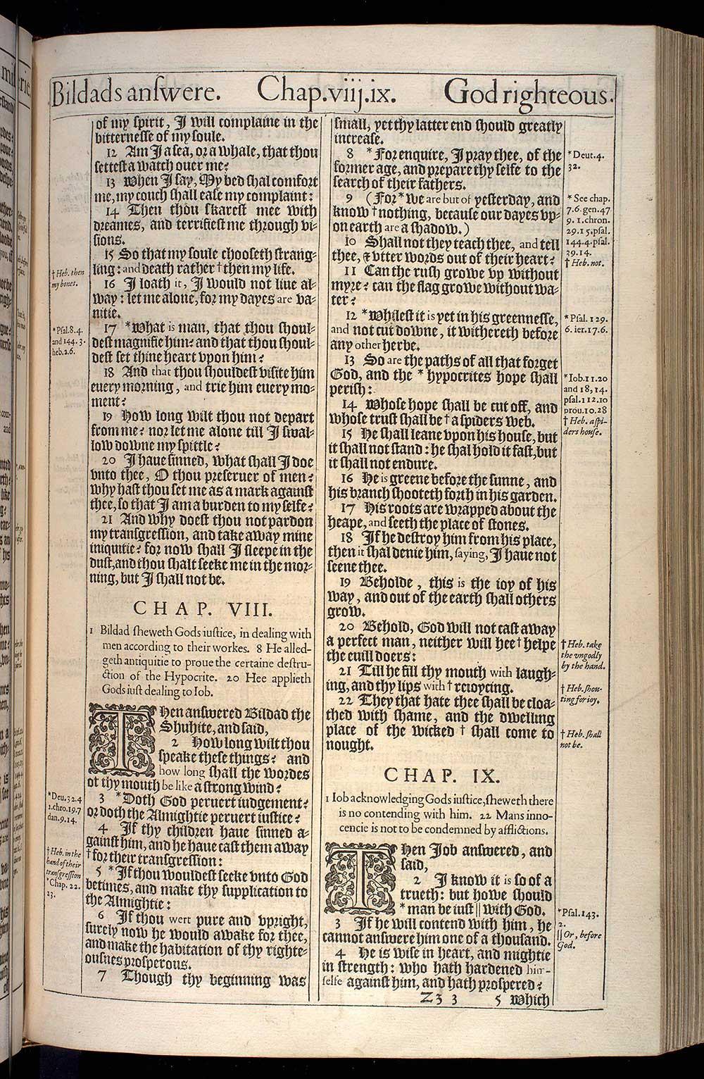 Job Chapter 8 Original 1611 Bible Scan