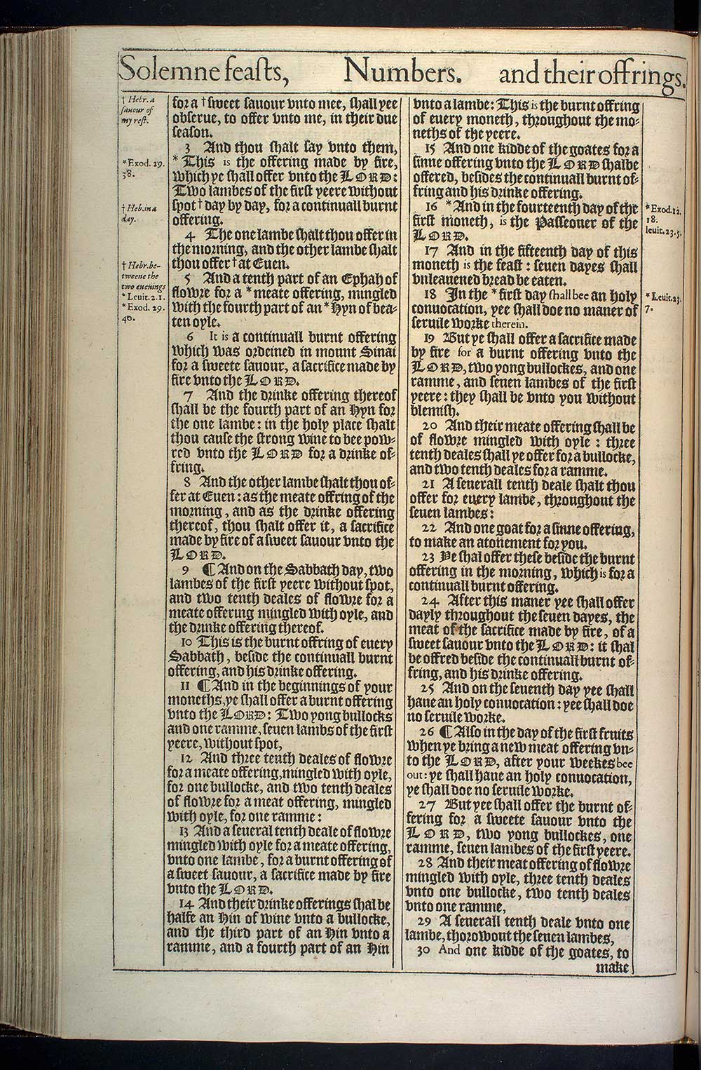 Numbers Chapter 28 Original 1611 Bible Scan