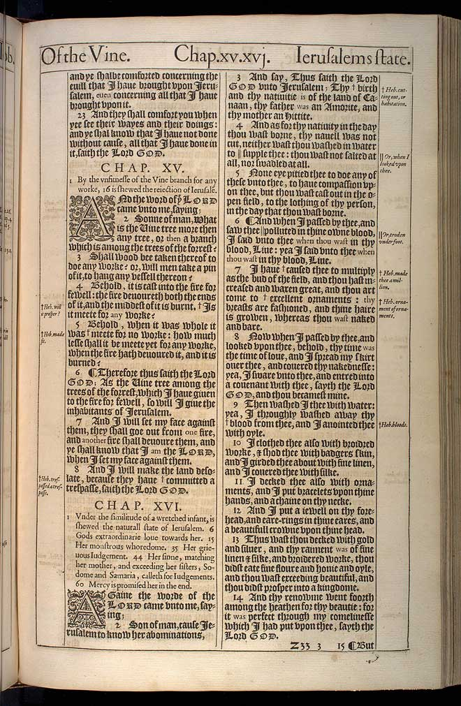 Ezekiel Chapter 14 Original 1611 Bible Scan