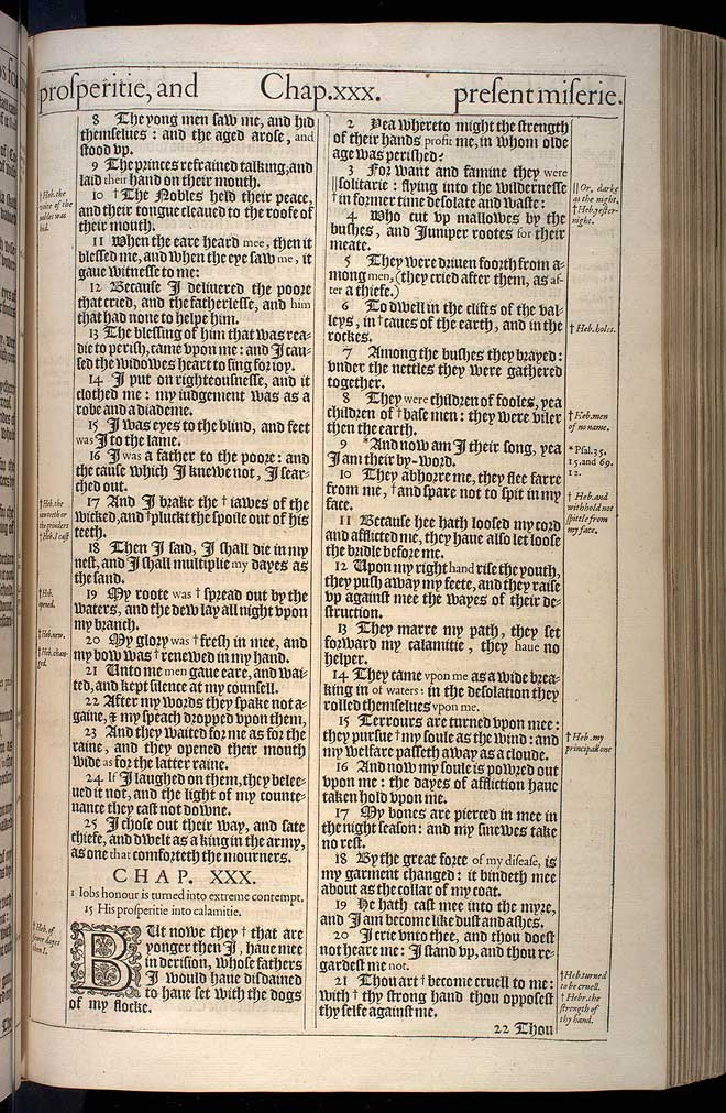 Job Chapter 30 Original 1611 Bible Scan