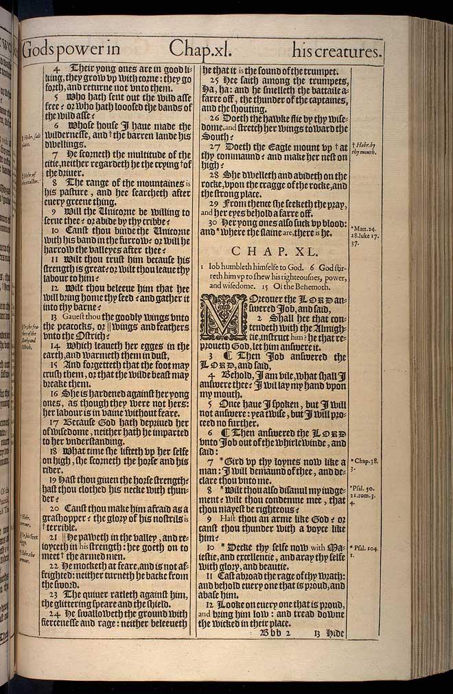 Job Chapter 40 Original 1611 Bible Scan