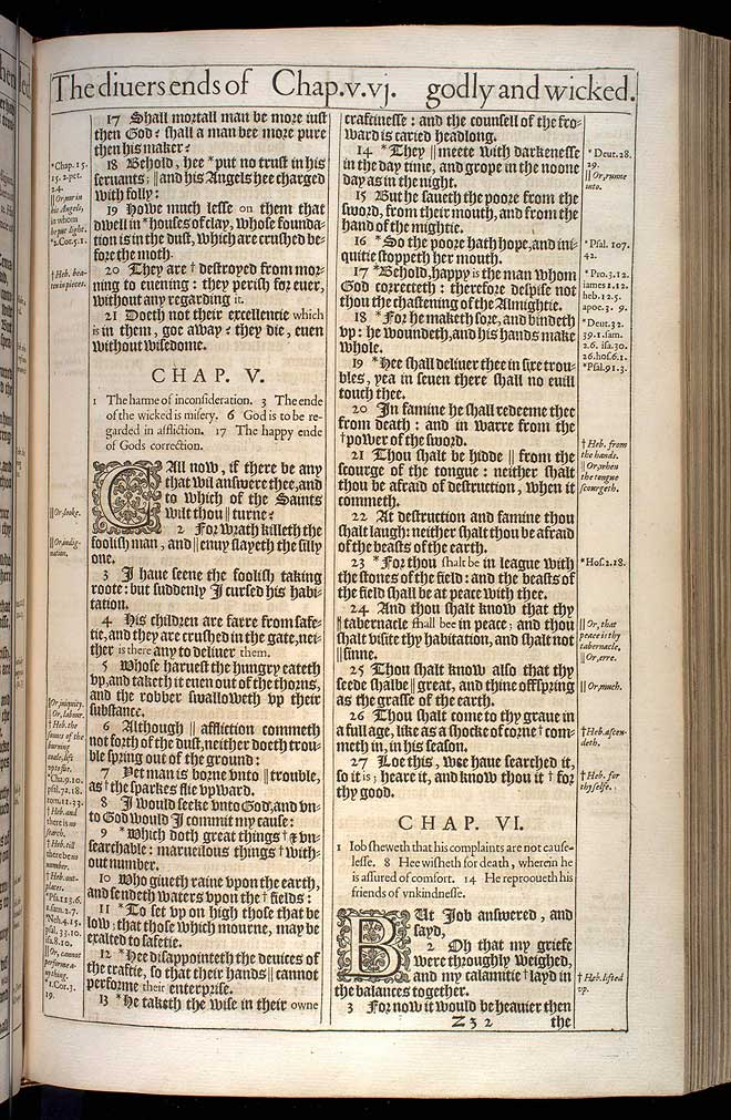 Job Chapter 6 Original 1611 Bible Scan
