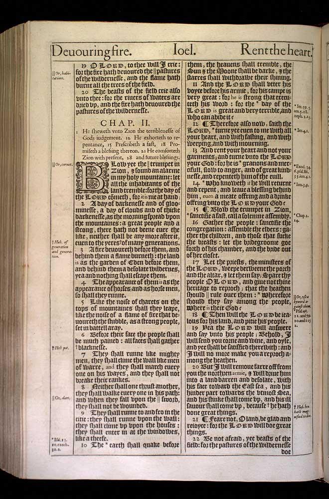 Joel Chapter 2 Original 1611 Bible Scan