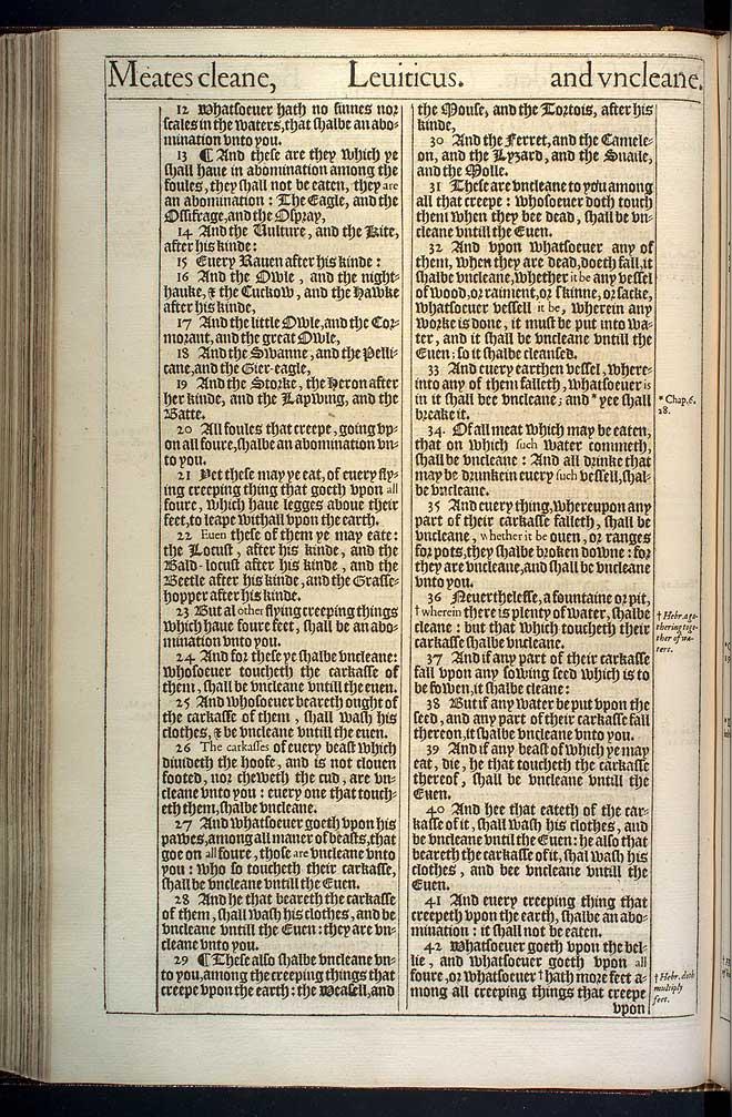 Leviticus Chapter 11 Original 1611 Bible Scan