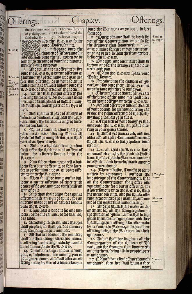 Numbers Chapter 15 Original 1611 Bible Scan