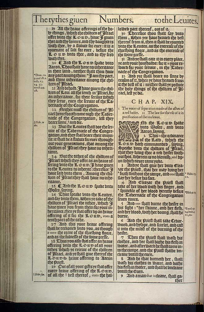 Numbers Chapter 19 Original 1611 Bible Scan