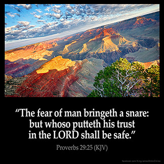 Inspirational Image for Proverbs 29:25