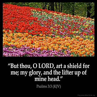 Inspirational Image for Psalms 3:3