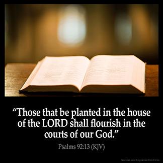 PSALMS 92:13 KJV