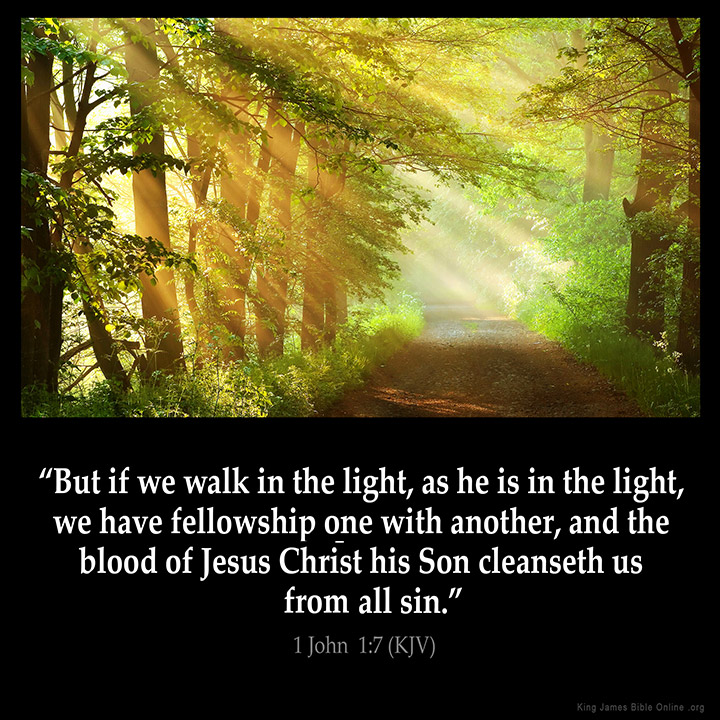 Image result for walk in the light kjv