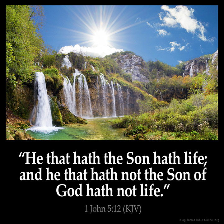 Inspirational Bible Quotes About Life Captivating 1 John 512 Inspirational Image