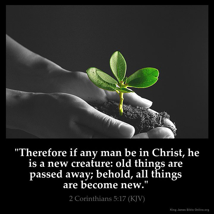 Image result for You are a new creation  kjv
