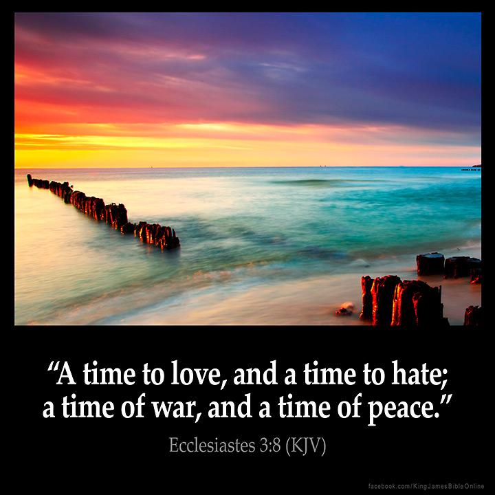Ecclesiastes 3:8 Inspirational Image