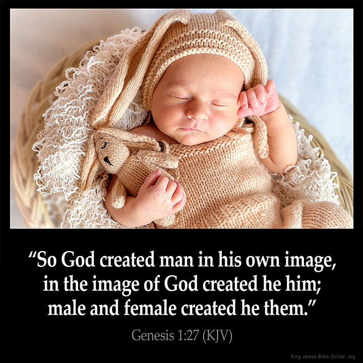 Genesis 1:27 Inspirational Image