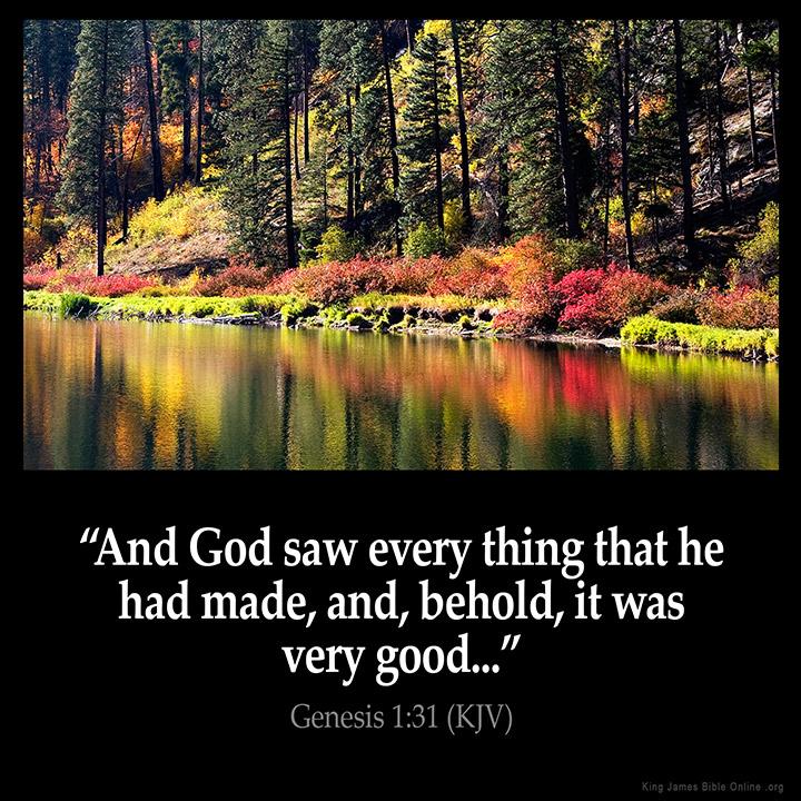 Genesis 1:31 Inspirational Image