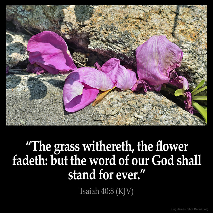 Image result for isaiah 40:8 kjv