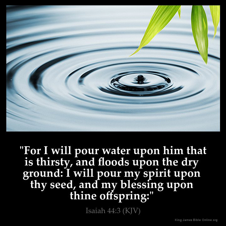 Image result for I will pour out my blessings upon you kjv
