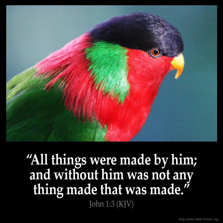 John 1 3 Inspirational Image