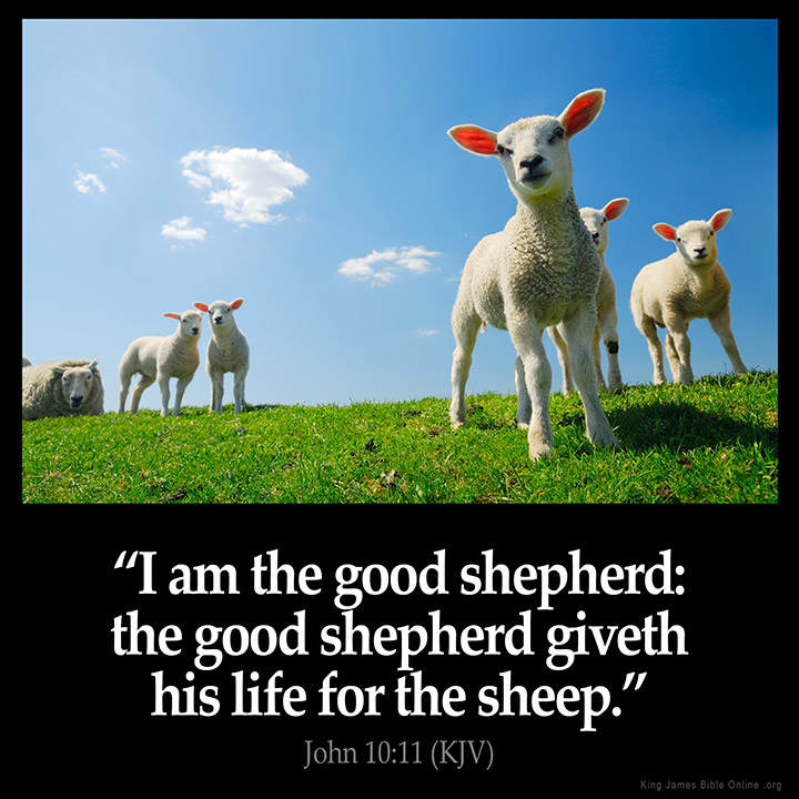Image result for i am the good shepherd kjv