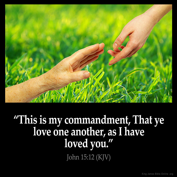 Image result for love one another as i have loved you kjv