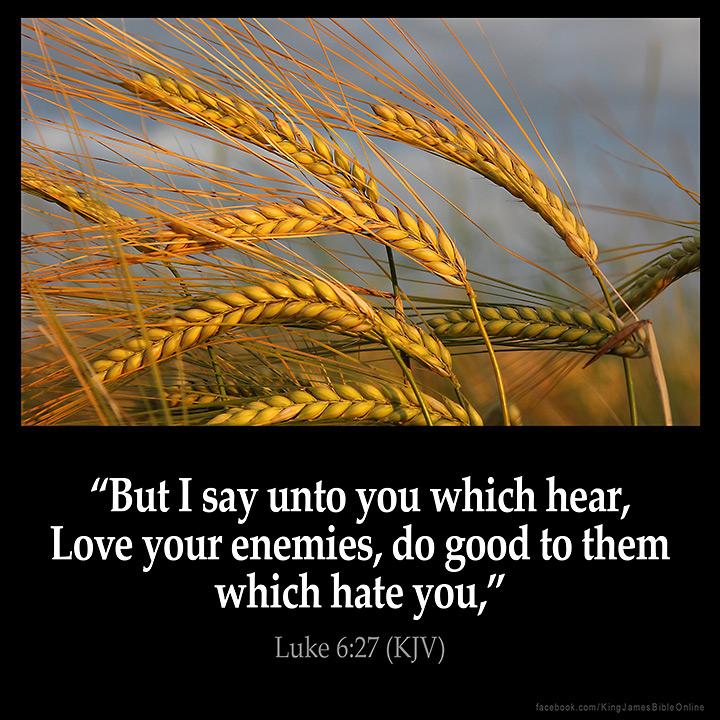 Luke 6:27 Inspirational Image
