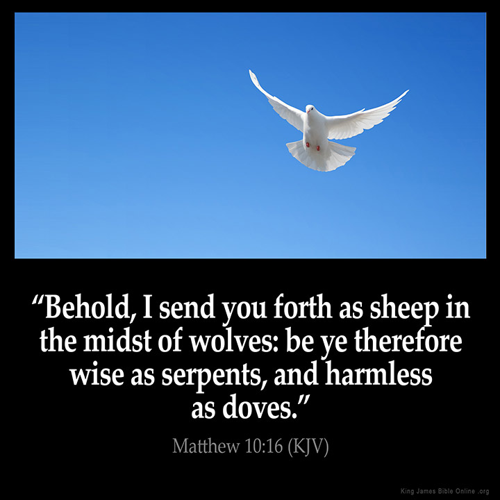"MATTHEW 10:16 KJV ""Behold, I send you forth as sheep in the midst ..."