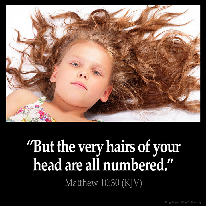 Matthew 10:30 Inspirational Image