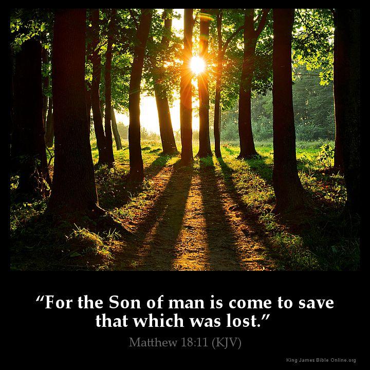 Matthew 18:11 Inspirational Image