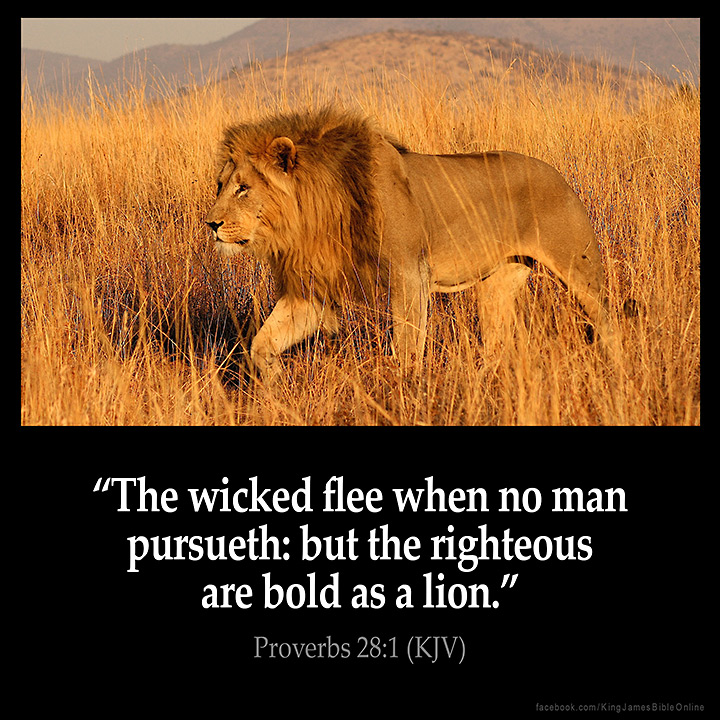 Proverbs 28:1 Inspirational Image