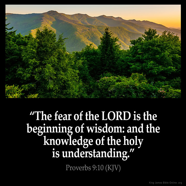 Image result for the fear of god is the beginning of wisdom kjv