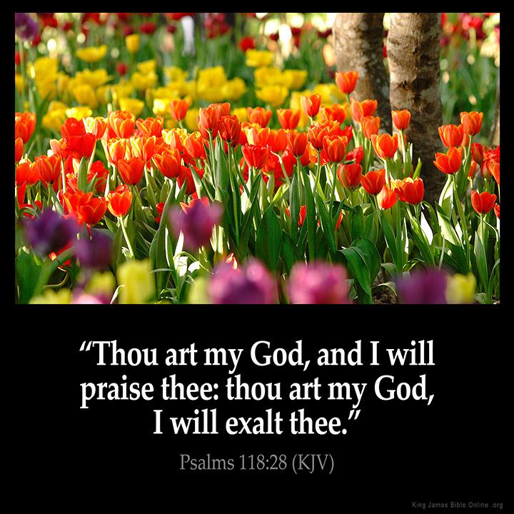 Psalms 118:28