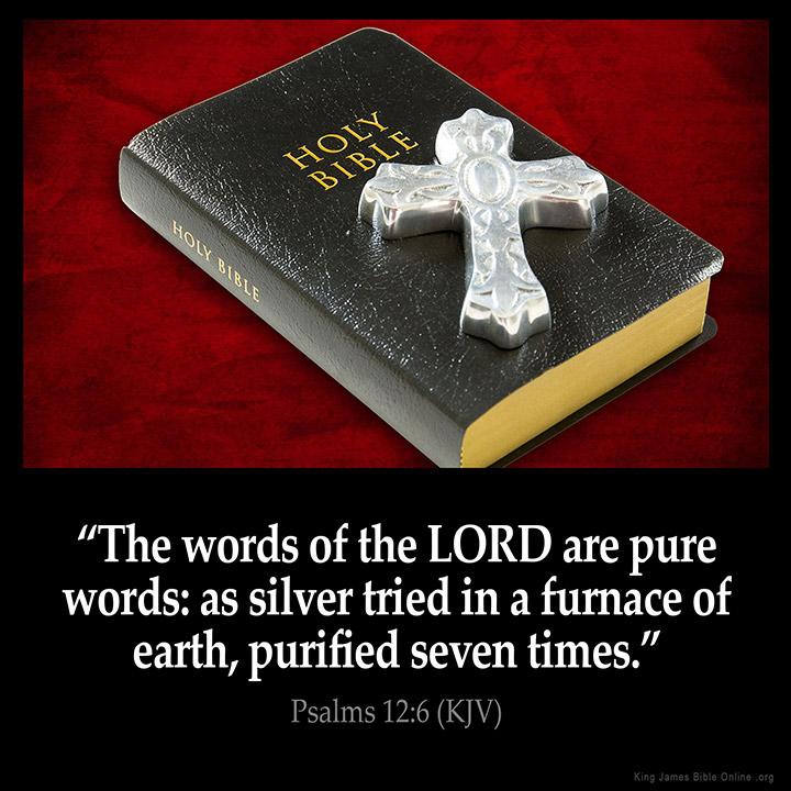Psalms 12:6