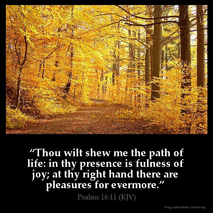 psalms 16 11 inspirational image