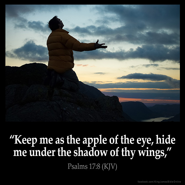 Psalms 17:8 Inspirational Image