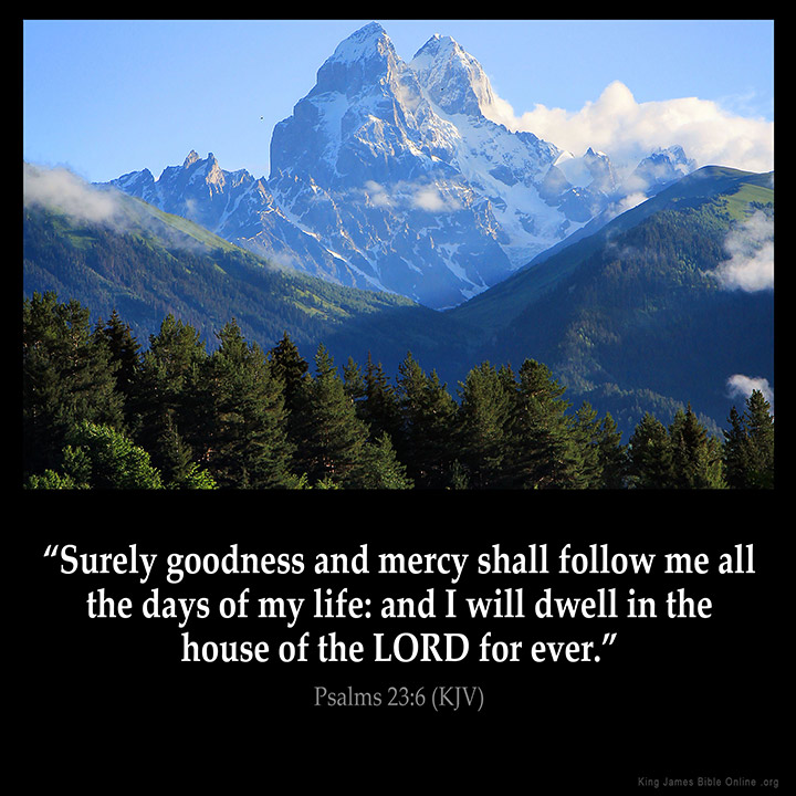 Image result for Goodness and mercy kjv