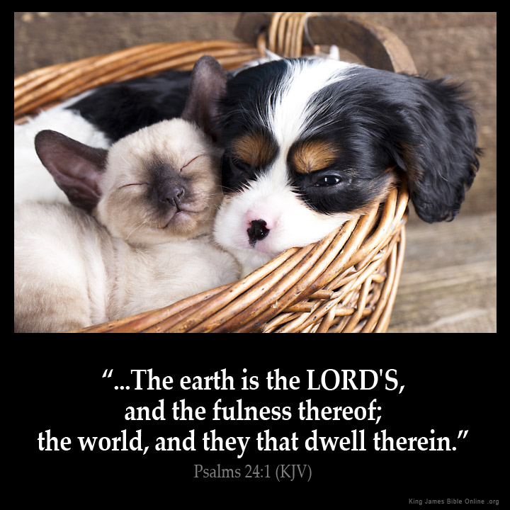 Psalms 24:1 Inspirational Image