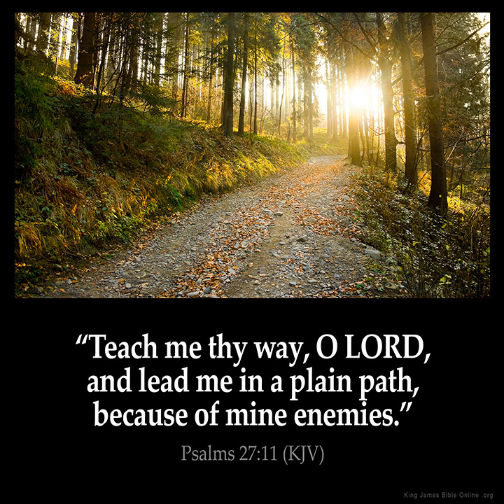 Psalms 27:11 Inspirational Image