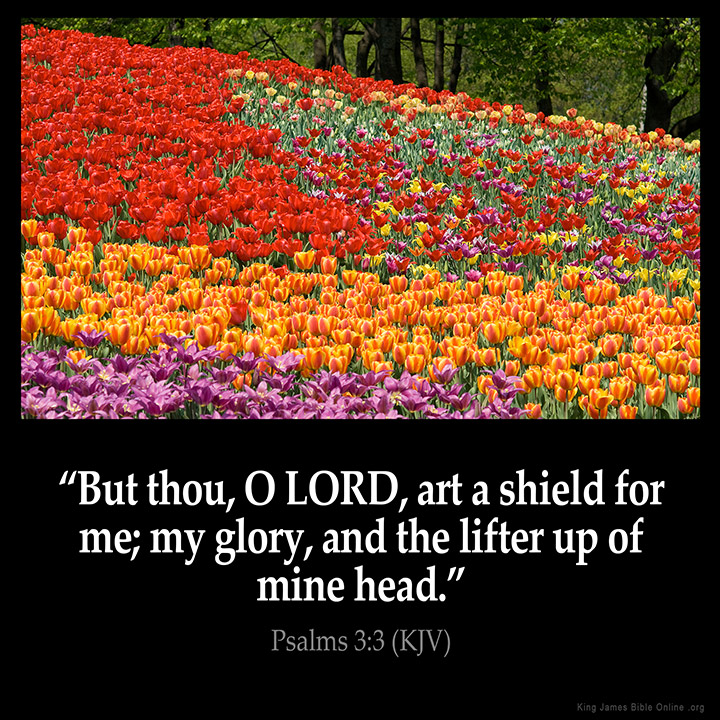 Psalms 3:3 Inspirational Image
