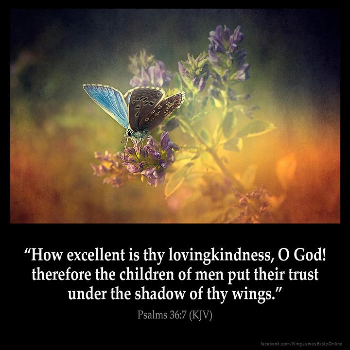 Psalms 36 7 Inspirational Image