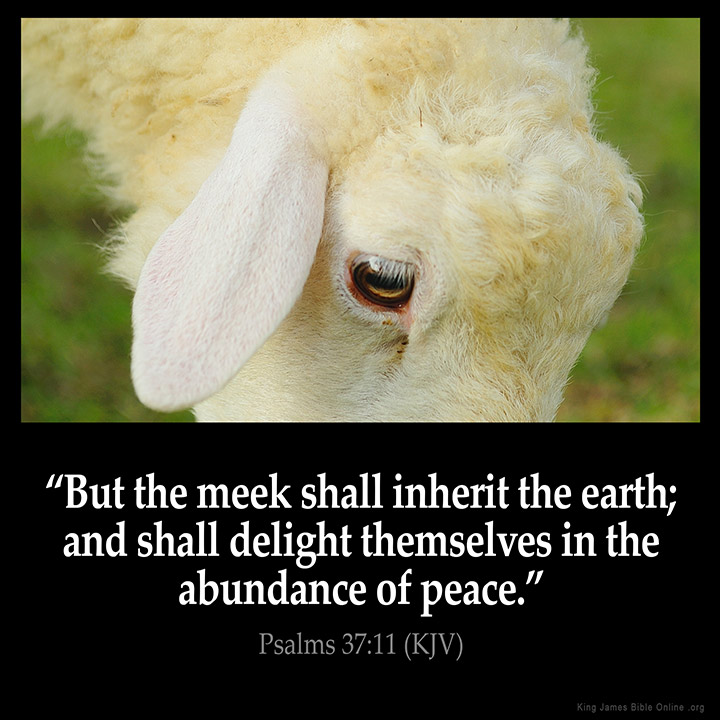 Psalms 37:11 Inspirational Image