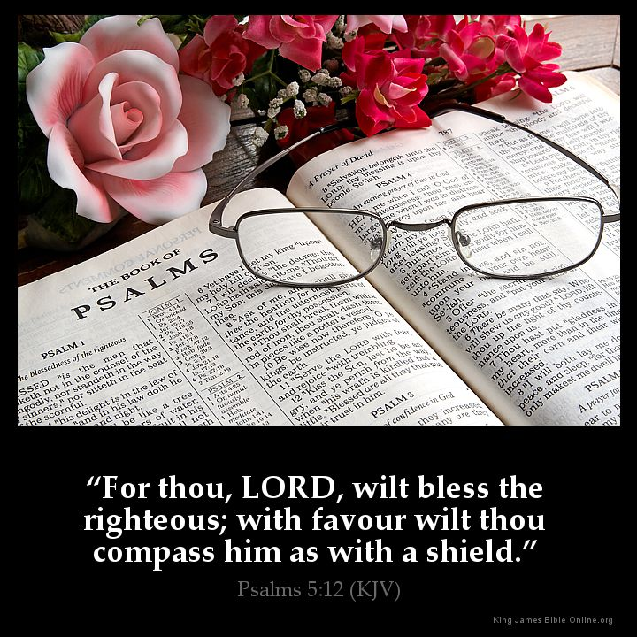 Image result for Favor as with a shield kjv